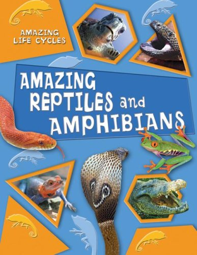 Amazing Reptiles and Amphibians (Amazing Life Cycles) by Brand: Gareth Stevens Publishing