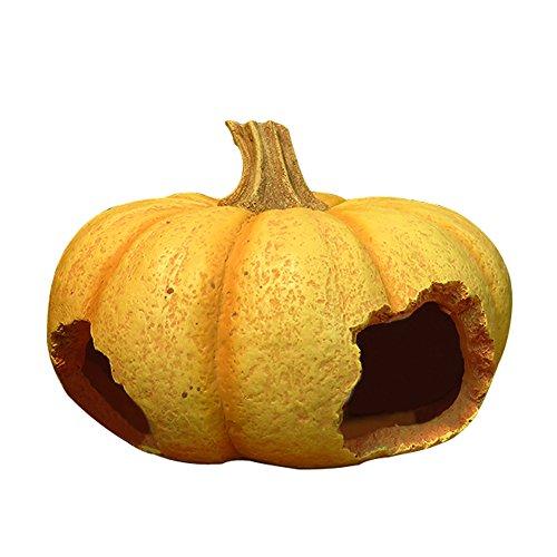 OMEM Pumpkin Hideout Box,Walnut Hideout Box,Reptile Hideout Box, Hideout Caves, Small Animal Hideaway (Pumpkin)