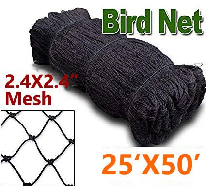 - Bird Netting to Protect Fruit Trees, Bushes & Vegetables from Hungry Birds, 25 x 50,50 x 50,50 x 100 Garden Netting Protects Gardens from Chickens & Poultry (2.4mesh-25x50)