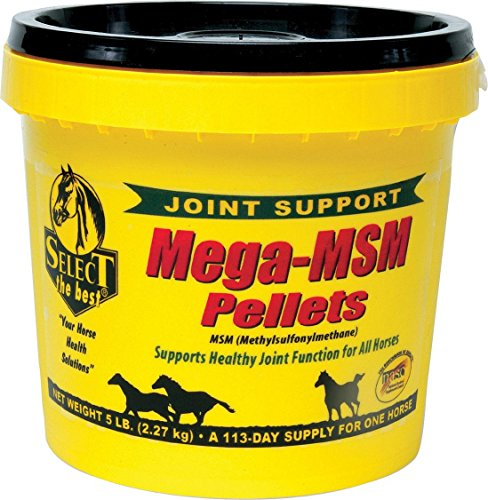 RICHDEL INC Mega-Msm Pellets Joint Support For Horses White 5 POUND ()