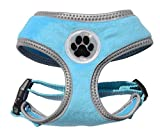 Turquoise Reflective Padded Soft Dog Harness Safe Harness Winter Pet Harnesses for Small Dogs,Medium Size Review