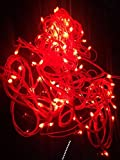 Blackberry Overseas Decorative RED cOLOR Rice LED Lights, 15 Metre Long