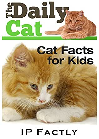 The Daily Cat - Cat Facts for Kids - Cat Book for Children ...