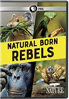 Nature: Natural Born Rebels Dvd 0