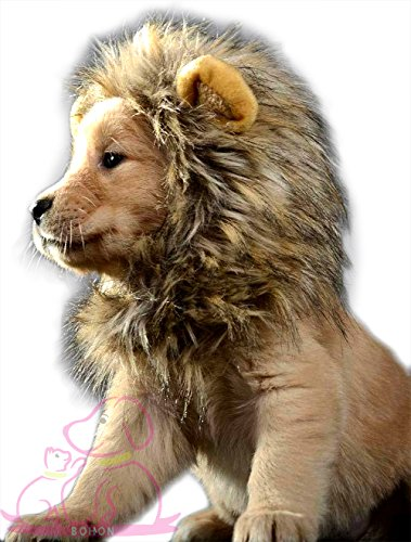 BOHON Pet Costume Lion Mane Wig for Cat Dog Halloween Costume with Ears Fancy Lion Hair Decor Dress Up for Christmas Party Festival for $<!--$8.79-->