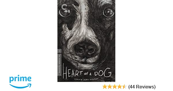 Amazon Heart Of A Dog The Criterion Collection Laurie Anderson Movies TV