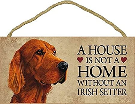 """House is Not Home without a Irish Setter Sign Plaque Dog 10/"""" x 5/""""  gift pet"""