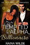 Tempted by the Alpha Billionaire: An Interracial Romance