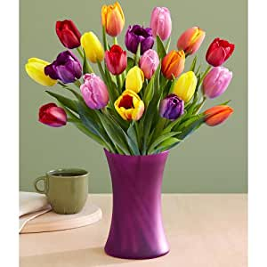 20 Multi Colored Tulips With Free Glass Vase