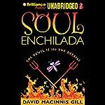 Soul Enchilada | David Macinnis Gill