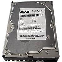 White Label 250GB 8MB Cache 7200RPM ATA100 (PATA) IDE 3.5 Desktop Hard Drive - New w/1 Year Warranty