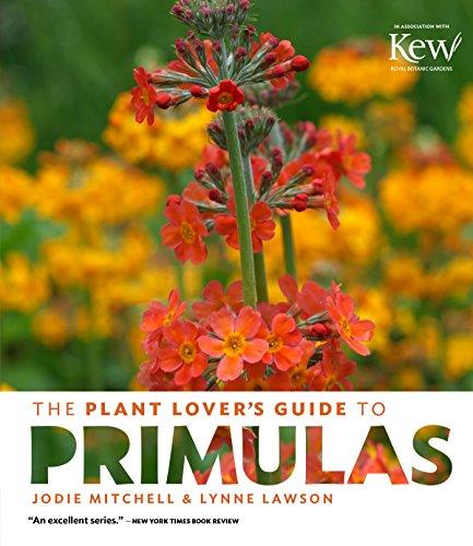 Herbaceous Perennial Plants - 8