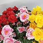 Cupcinu-Artificial-Flowers-Simulated-Azalea-Fake-Flowers-Fake-Silk-Bouquet-Flower-for-Home-Wedding-Decor-Without-vase-Size-35cm55cm-Watermelon-red