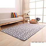 Bathroom water-absorbing non-slip floor mat door mats/Entrance mat/Household mats/Bed bedroom blanket-F 160x230cm(63x91inch)