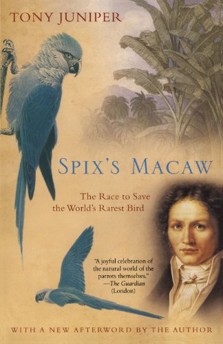 Spix's Macaw: The Race to Save the World's Rarest Bird ()