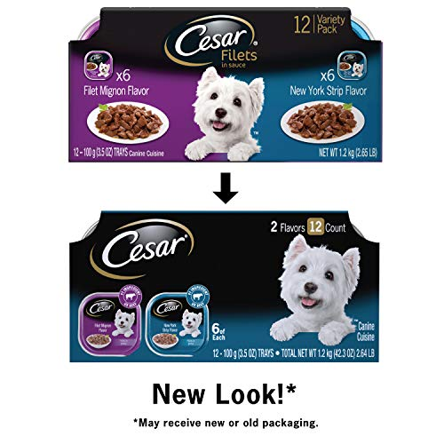 Cesar Canine Cuisine Wet Dog Food, Filet Mignon & New York Strip, 3.5 oz (Pack of 12)