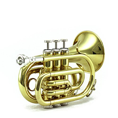 FINAL SALE! 10% OFF Sky Band Approved Brass Bb Pocket Trumpet with Case, Cloth, Gloves and Valve Oil, Guarantee Top Quality Sound, Gold (Gold)