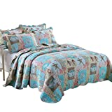 Enjoylife Seashell Quilt Set 3 pcs King Size Bedspread Beach Style Coverlet Ocean Patchwork Shell Cal-King Quilts(106''x96''inch) 2 Shams