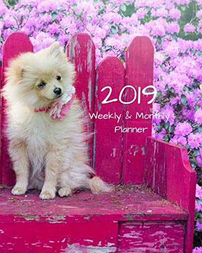 2019-Weekly-and-Monthly-Planner-Pomeranian-Dog-Daily-Organizer-To-Do-Calendar-in-ReviewMonthly-Calendar-Notes-Volume-1
