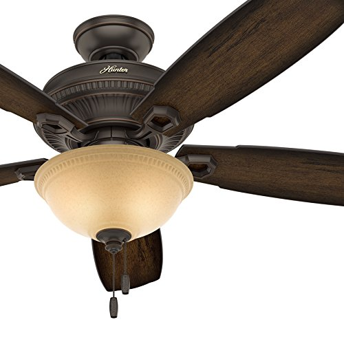 Hunter Fan 52 inch Traditional Ceiling Fan with LED Bowl Light Kit in Onyx Bengal (Certified Refurbished)