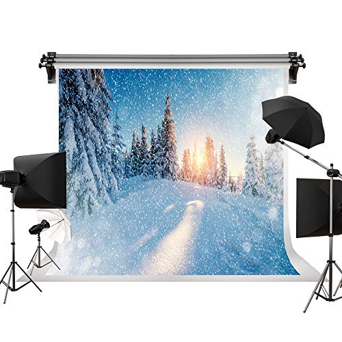 Kate 7x5ft/2.2x1.5m Winter Backdrops Snow Scene Backdrop Snowflake Background Light Backdrops Natural Scenery Photography Background Photo Shoot Backdrop Backdrops Photo Shoots]()