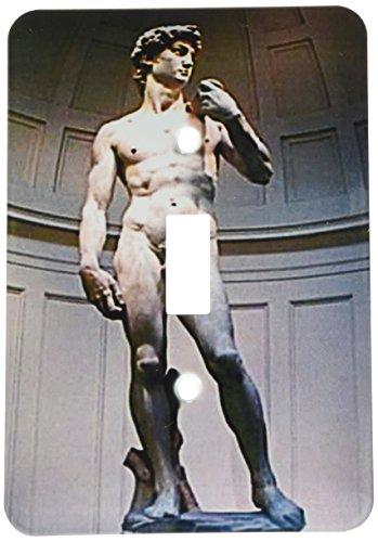 3dRose LLC lsp_602_1 Michaelangelos David Statue, Single Toggle Switch David Rose Lighting