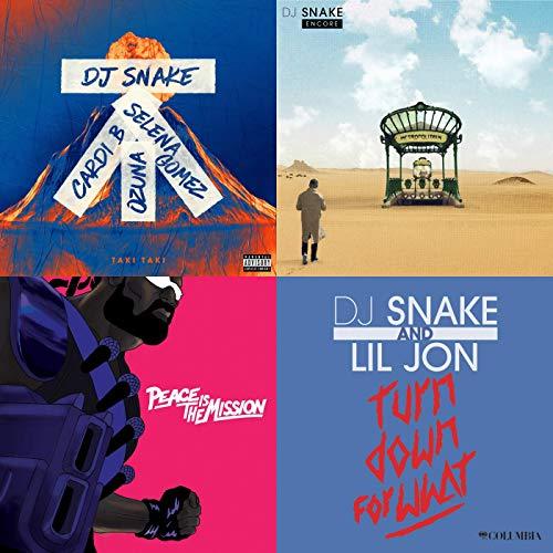 Best of DJ Snake
