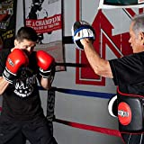 Ringside Gel Micro Boxing MMA Punch Mitts