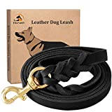 Fairwin Leather Dog Leash 6 Foot - Braided Best