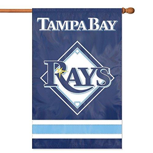 Tampa Bay Rays - Mlb Spirit Tampa Bay