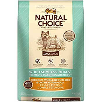 Chicken Recipe Small Breed Adult Dog Food Nutro Similar