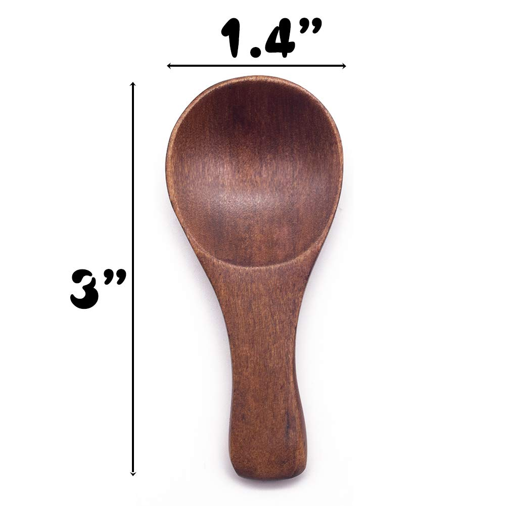 HansGo Small Wooden Spoon, 10PCS Mini Condiment Seasoning Salt Spoon Honey Coffee Tea Sugar Salt Jam Mustard Ice Cream Spoons