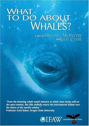 (What to do About Whales? - PAL Version)