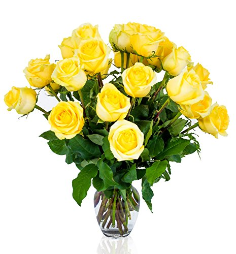 FLWERZ [Touch of Elegance] Two Dozen Classic Aromatic Beautiful Blooming Yellow Roses Gorgeous Long Stem Fresh-Cut Hand-Made Luxury Bouquet Arrangement of Rose Flowers w/Free clear 8 oz Vase
