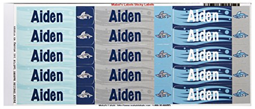 Mabels Labels 40845003 Personalized 45 Count product image