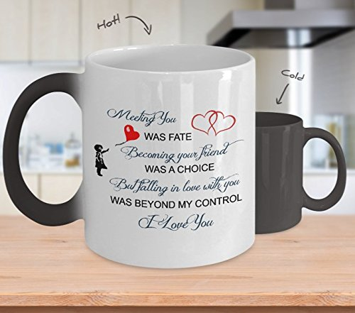 Color Changing Wife Mug For Husbands And Stuff For Boy Friend Meeting You Was Fate