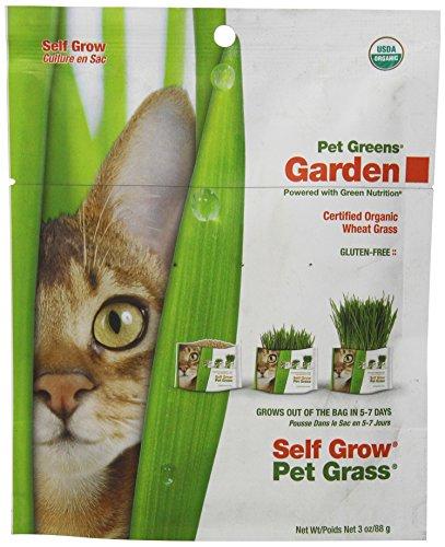 Greens Garden Wheat Grass Self Grow product image