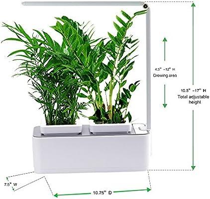 Aibis hierbas aromáticas para interiores, sistema de crecimiento ...