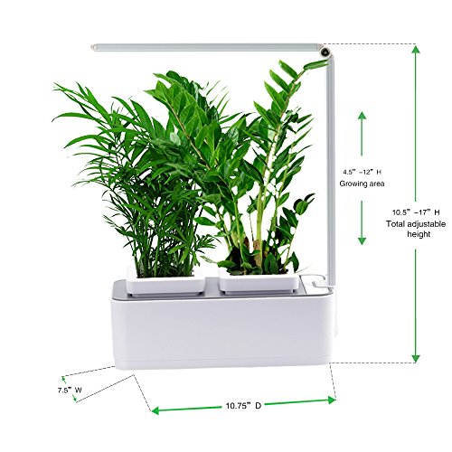 Indoor Herb Garden, AIBIS Hydroponics Watering Growing System, Organic Home Herbs Gardening Kit with Led Grow Light, Not Contain Seeds, Best for Flower and Vegetable like Thyme, Mint and Tomato(White) by AIBIS (Image #1)