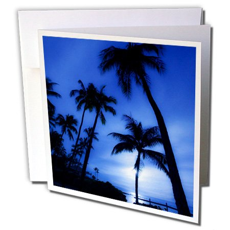 Hawaii, Kapalua Beach. Sunset and palm trees - Greeting Cards, 6 x 6 inches, set of 12 (gc_89744_2)