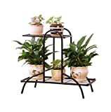 2-Tier Iron-Art Flower Rack Indoor Balcony Anti - Rust Plant Stand ( Black / White) ( Color : Black )