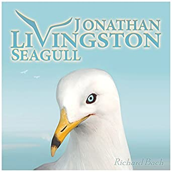 jonathan livingston seagull setting