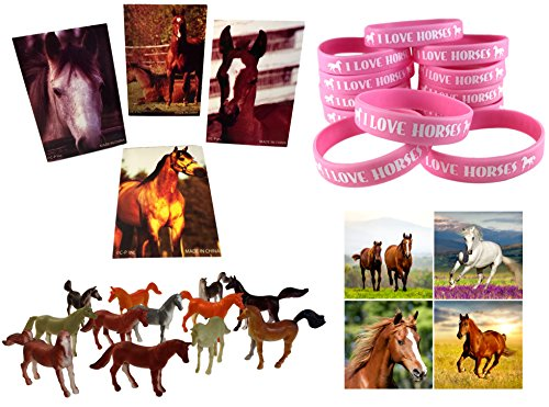 Funabaloo Cowgirl Horse Birthday Party Favor Supplies 60 Piece Bundle (12 Pink Horse Wristbands, 12 Horse Mini Note Pads, 12 Mini Plastic Toy Horses, 24 Horse & Pony Stickers)]()