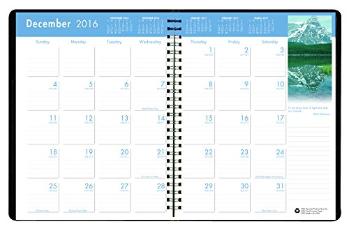 House of Doolittle 2017 Monthly Calendar Planner, Earthscapes, 8.5