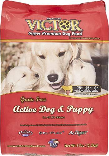 Victor Dog Food Reviews >> Victor Dog Food Review The Pet Town