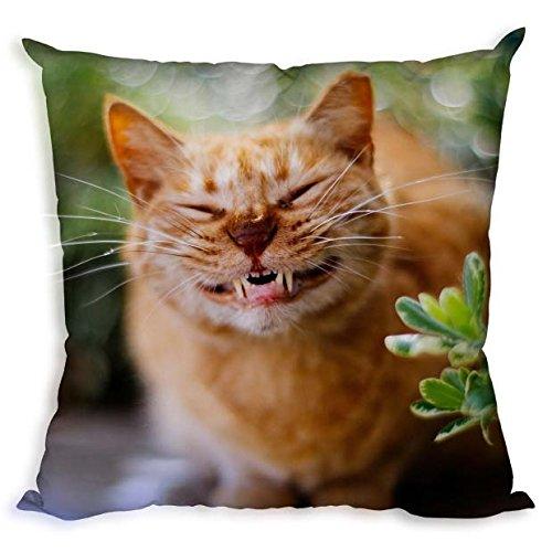 Funda de almohada de arte DIY con diseño de animales y gatos ...