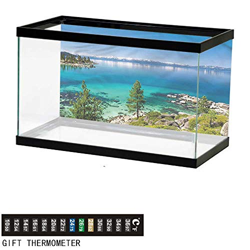 bybyhome Fish Tank Backdrop Blue,Tranquil Tahoe Shoreline,Aquarium Background,30