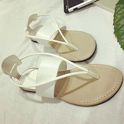 Sandalias para Mujer, RETUROM Sandalias planas del ocio de Bohemia de las mujeres del verano de la manera para los zapatos al aire libre Blanco