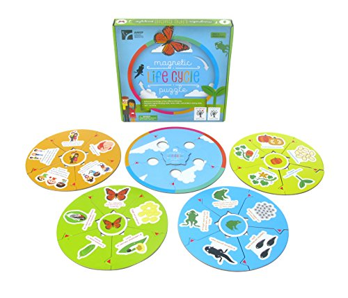 American Educational Products MAG-203 Magnetic Lifecycle Puzzle Activity Set (Frog Life Cycle Activities)