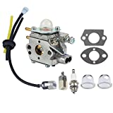 Panari Carburetor + Fuel Line Filter Spark Plug for ECHO Trimmer GT2400 SRM2400 SRM2410 SRM2450 PE2400 PP1250 PP1260 PP1400 PPT2400 SRS2400 TT24 TT24A PPFD2400 PPSR2433 Pole Pruner